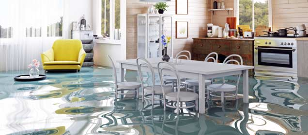 What to do if your house floods